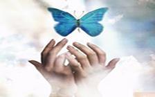 کمک به دیگران نقش تعیینکنندهای در کیفیت حیات انسان دارد